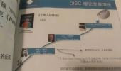 TTI的DISC与激励因子